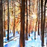 Burgbergwald in Winter